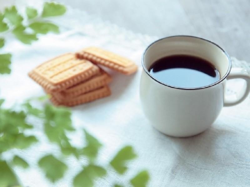 コーヒー 猫に与えてはいけない食べ物